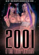 2001 A Big Bust Odyssey